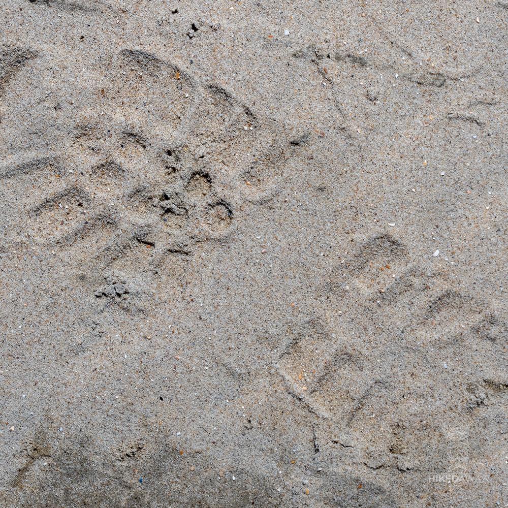Een voetafdruk op het strand op het Nederlands kustpad